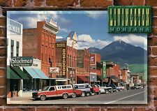 Street View Livingston Montana, Parked Cars & Shops, The Stockman etc - Postcard