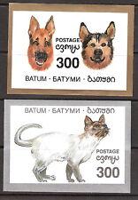 Batum Pets Dogs and Cats Souvenir Sheets MNH
