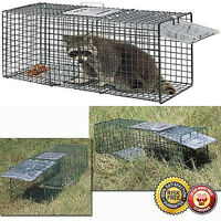 """Cage Traps Raccoon Skunk Animal Catch Release Humane Rodent Cage 32"""" X 12"""" X 12"""""""