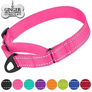 Reflective Dog Collar Martingale Collars Personalized Nylon Pet Collar for Dogs