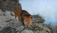"""high quality oil painting 100% handpainted on canvas""""lion"""""""