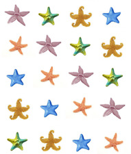 Starfish / Sand-dollars Waterslide  / Water Transfer Nail Decals/Nail Art
