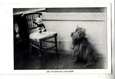 DA47.Vintage Postcard.Dogs. An attentive listener. Dog and Doll.