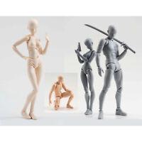 Archetype He She Ferrite Figma Movable Body SHF Figma Feminino Kun Body Chan PVC