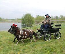 Mini miniature horse biothane parade team harness Made in USA