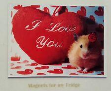 I LOVE YOU / VALENTINES HAMPSTER FRIDGE MAGNET - M453
