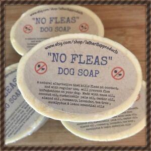 2 X No Fleas, Handmade, Natural, Organic & Vegan Dog Soap