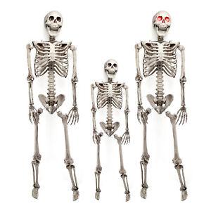 3ft/5.6ft Halloween Skull Skeleton Human Full Life Size Prop LED Eye Party Decor