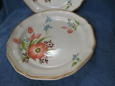 Mikasa PEACH PETALS Dinner Plate Set of 2 Plates Microwave Dishwasher Safe NICE