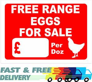 Free Range Eggs For Sale - Sign
