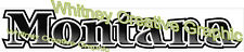 """MONTANA Older Style RV LOGO Lettering decal 59"""" X 10"""""""
