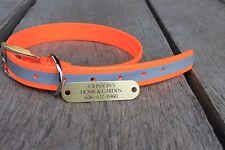 "1"" Plastic Coated Nylon Orange Reflective Dog Collar W/Brass  Engraved Plate"