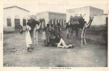 DJIBOUTI - Retour dans la brousse