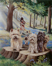 """CAIRN TERRIER DOG FINE ART LIMITED EDITION PRINT - """"Cairns in the Bluebell Wood"""""""