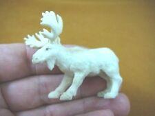 (moose-7) little white bull Moose of shed ANTLER figurine Bali detailed carving