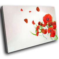 ZAB222 Red Poppy Flower Cool Modern Canvas Abstract Wall Art Picture Prints