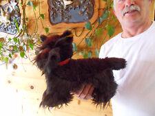 Steiff dog Scotch Terrier large all Ids stuffed animal 2132