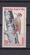 Haute-Volta / Burkina Faso - MNH - Vogels / Birds