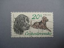 Vintage collectible stamp, Dog Irsky Setter, Czechoslovakia, 1973