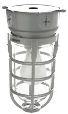 Coleman Cable L1706 100 Watt Outdoor Weatherproof Industrial Light With Clear Gl