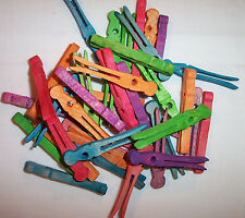 "25 Parrot Bird Toy Parts Colored Wood 2-1/2"" Clothespins Craft Parts W/ Hole"