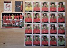 Panini UEFA Euro 2008 Austria/Switzerland Complete Team Austria + Foil Badge