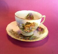 Royal Vale Pedestal Cup And Saucer - Cottage Garden - Ridgway Potteries England