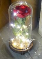 Louis Garden Red Rose Petal Kit Beauty And The Beast LED Light