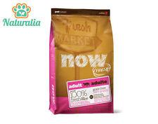 PETCUREAN NOW FRESH- ADULT- Grain Free- Crocchette Gatto 3,62 Kg