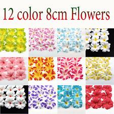"12/24Pc Hawaiian Plumeria Frangipani Silk Flowers Head 3"" Artificial Flowers DIY"