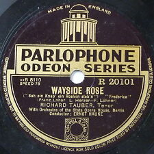 "78rpm 12"" RICHARD TAUBER wayside rose / o maiden my maiden"