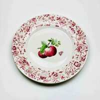 """Pfaltzgraff Delicious Red Apples 11"""" Stoneware Dinner Plates Set of 4"""