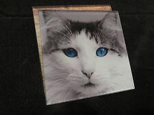 Art2Glass Cat Coaster