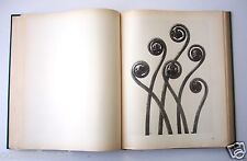Rare KARL BLOSSFELDT URFORMEN DER KUNST 120 Photogravures of Plants Photographs