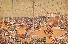 B95252 riesen circus krone germany der circus maxim II postcard chariot horse