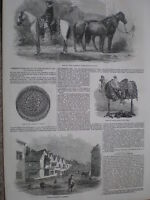 The floods at Fisherton Salisbury 1852 old print and article
