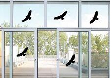 5 Vogel Aufkleber - Vögel Fenster Glas Greifvogel Fensterbild  je 24x10cm B320
