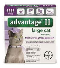 New Advantage II For Large Cats over 9 lbs 4 Month Supply Free Shipping