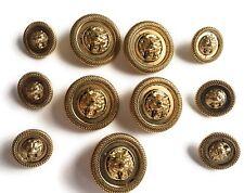Button Set Antique Gold Lion Designer Buttons 11 Pc.
