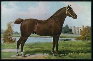 art Otto Eerelman England Hackney Horse print original vintage old 1910 postcard