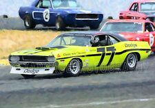 1970 Dodge Challenger  & Ford Mustangs Vintage Classic Race Car Photo CA-1285