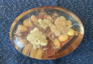 Vtg Dried Flower Acrylic Lucite Still Life Bouquet  Paperweight Made In France