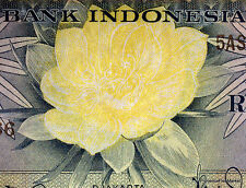 INDONESIE Splendide billet de 5 LIMA RUPIAH Pick65  emis 1959 oiseaux fleur