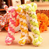 Dog Tough Strong Chew Knot Teddy Toy Pet Puppy Healthy Teeth Bear Rope Cotton