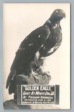 "Stuffed Golden Eagle RPPC ""Shot WHITE OWL South Dakota"" Antique Frontier Photo"