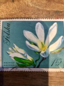 Large Old Polska Magnolia Flower Stamp In Good Condition