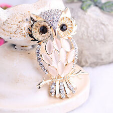 Big Owl Brooches Bouquet Vintage Wedding Hijab Scarf Pin Up Buckle Broches KY