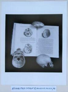 Macabre Photographer © Andrea Baldeck Gelatin Silver Print 'Deadhead, In 3 Acts'