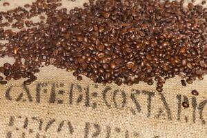 2.5 lbs Costa Rica Los Cerros San Juanillo Micro Lot Fresh 100% Arabica Coffee