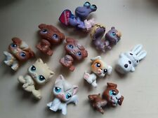 My Little Pet Shop Littlest Pet Shop Bundle Some Rare